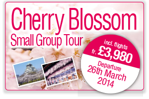 Cherry Blossom Small Group Tour